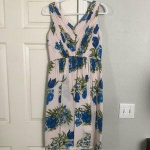 Bueatiful Boden Dress